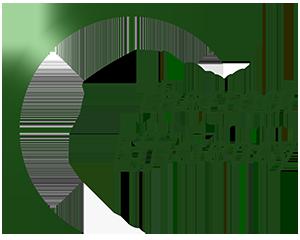 Energy Audit - Thermal Efficiency Audit Logo - Green Arc